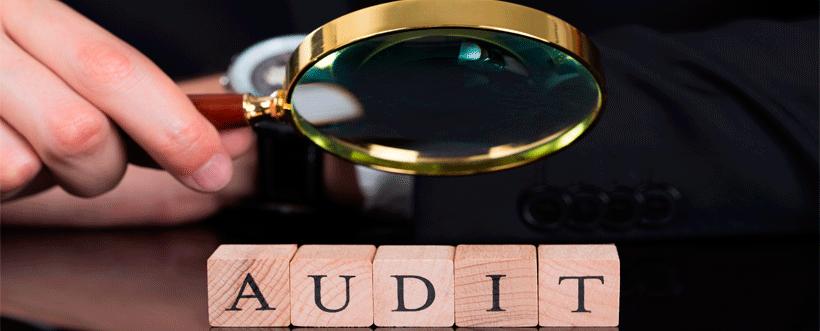 Auditoría de gestión de una empresa